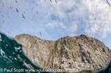 A Fisheye's View of Bass Rock