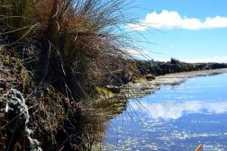 Pircas que delimitan el camino Inca y una pequeña laguna.