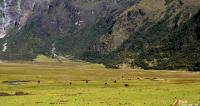 Jancapampa en Pomabamba