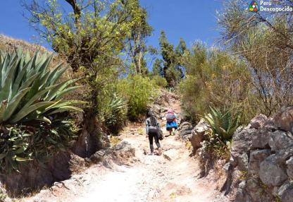 Camino al Centro Poblado de Santa Cruz, a una hora de Wilcacocha