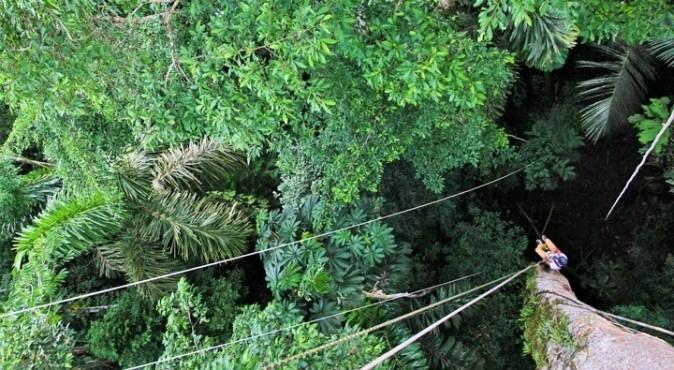Canopy Clib (3)