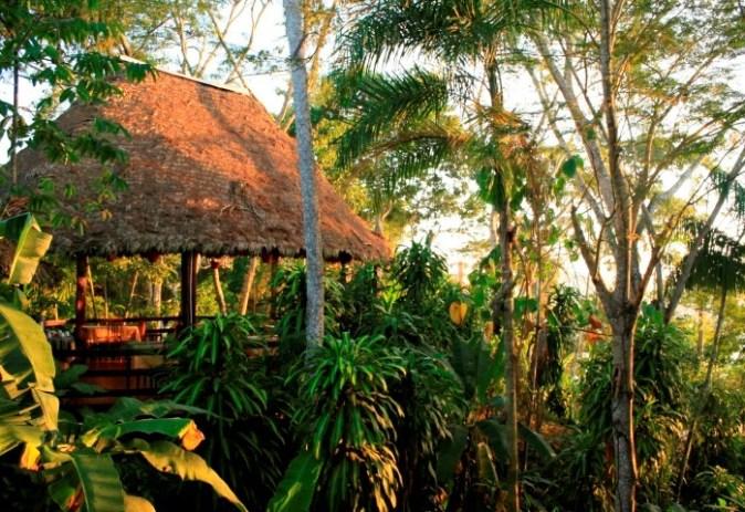 Manu National Park Expedition - Peru Eco Expeditions
