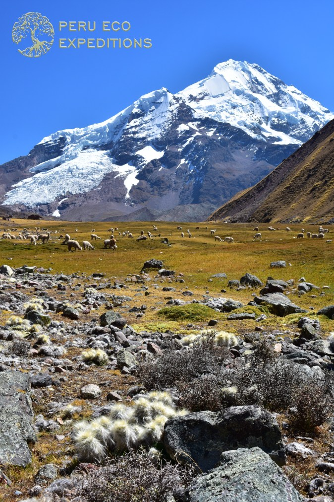 Ausangate Trek Classic Expedition - Peru Eco Expeditions