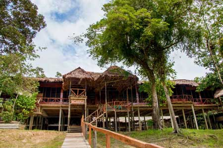 Authentic Amazon Lodges