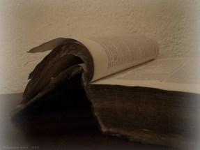 Geneviève Schmit - manuscrit - Fayard