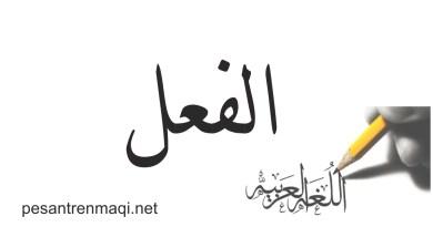 Fi'il ( الفعل )