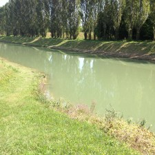 Canale Spinedo - Ronchis - Agosto 2015
