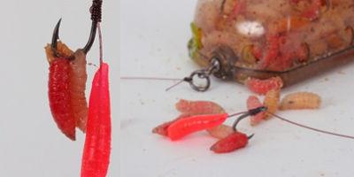 cârlig de vierme scăpând de paraziți interni