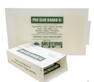 PRO Rat Glue Board XL Product Review