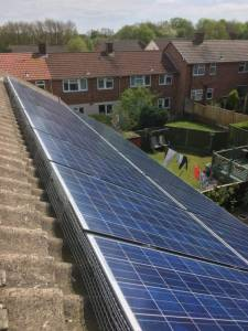 How to protect solar panels from pigeons in Liverpool.