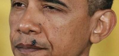 obama_fly_lip