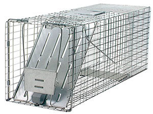 Large Havahart 1-Door Animal Trap