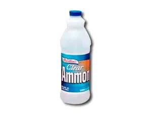 Clear ammonia