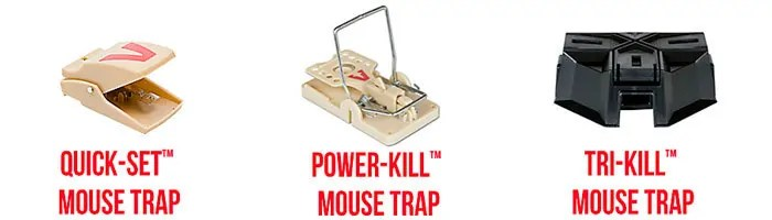 Best Mouse Traps for Cars