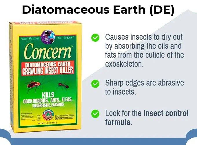 Diatomaceous Earth by Concern