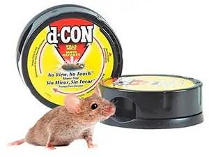 Mice trap by d-CON