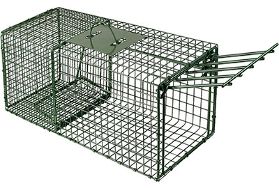 Heavy Duty Chipmunk Cage Trap by DUKE COMPANY
