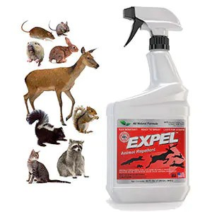 EXPEL Animal Repellent