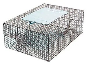Kness Kage-All Live Animal Sparrow Trap, Model# 161-0-004