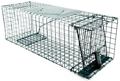 Katch-All #150-0-006 Chipmunk Live Cage Trap by Kness Manufacturing