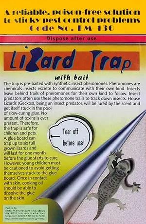 Gecko Lizard Flat Trap