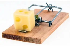 Wooden trap with some cheese
