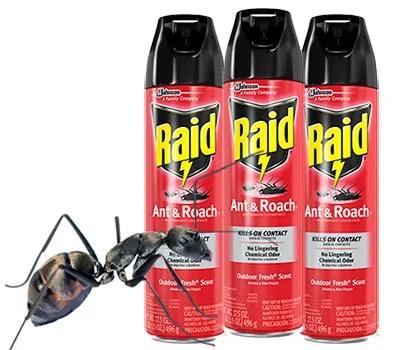 Raid Ant Spray