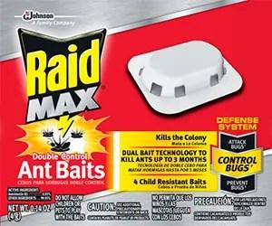 Raid Max Baits for Ants