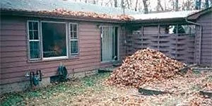 Rotting vegetation in your yard