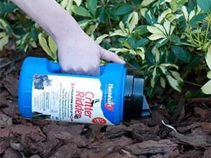 Best skunk repellents
