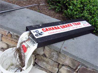 Snake traps
