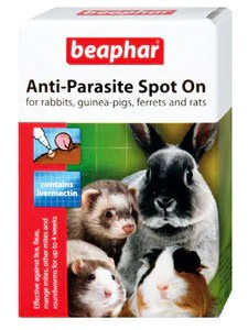 Easy treatment with beaphar Anti-Parasite Spot-On