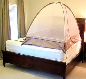 Anti bedbugs tent