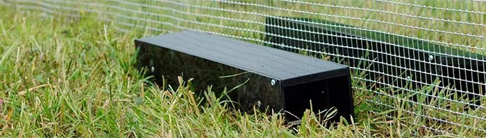 Trap and fence