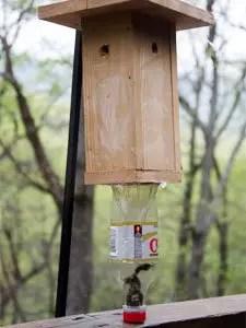 One of caprenter bee trap's plan