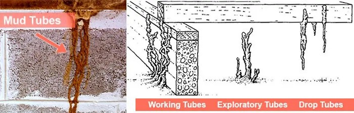 Mud and other tubes