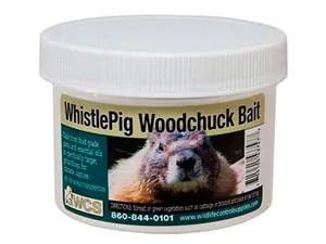 Whistlepig bait