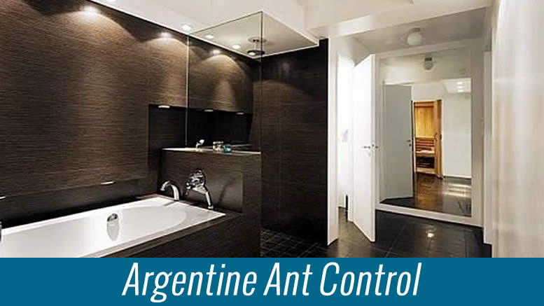 How To Do A Argentine Ant Treatment