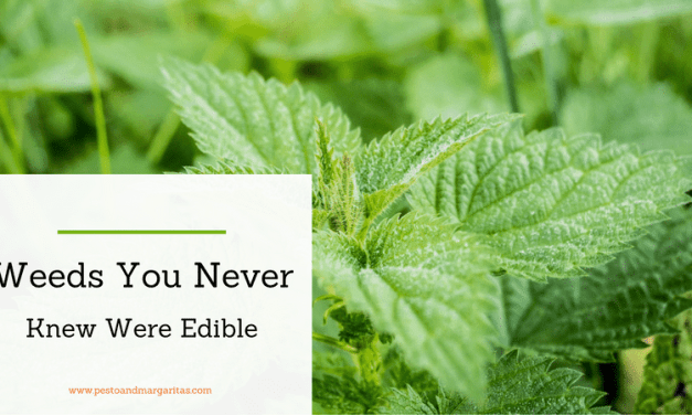 Weeds You Never Knew Were Edible