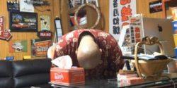 ヤマト運輸 チェーンソー恫喝 謝罪