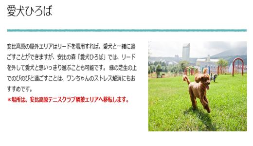 安比高原安比の森 愛犬広場|岩手県八幡平市