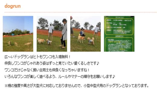 獅子吼高原ドッグラン|石川県白山市