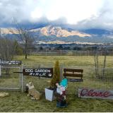 DOG GARDEN南を翔る風|熊本県阿蘇郡