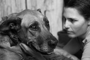 petaburtonphotography-peta-burton-darwin-photographer-dog-shoot-Macky-14