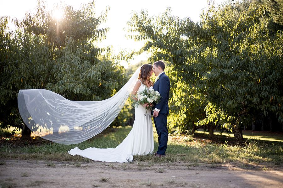 golden hour moment with couple in front of the orchard