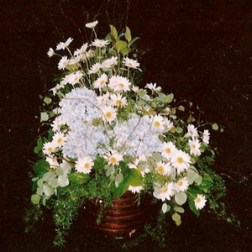picture of Hydrangea arrangement with Daisies