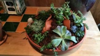 Cracked Pot arrangement $49