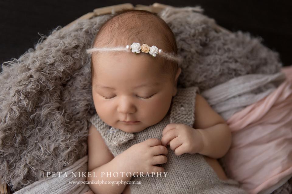 Newborn portraits hobart