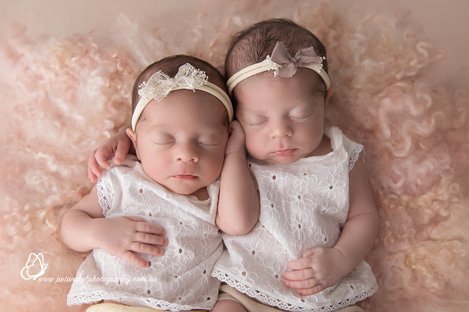 hobart newborn twins photography