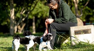 O Parque da Luz é uma área tranquila para se passear com o cachorro